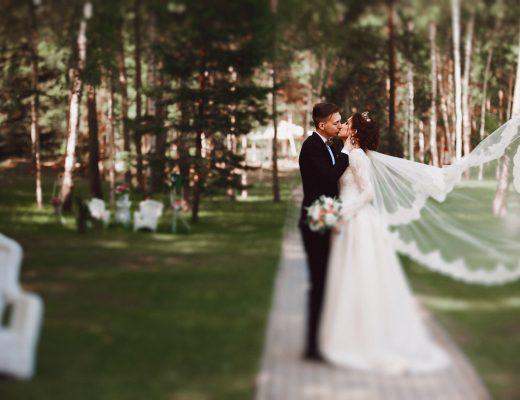 Наша свадьба (164)