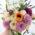 Букет невесты: мастер-класс